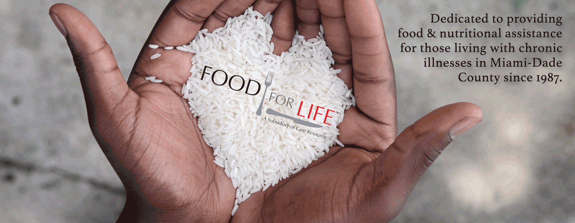 Food For Life Donation Page